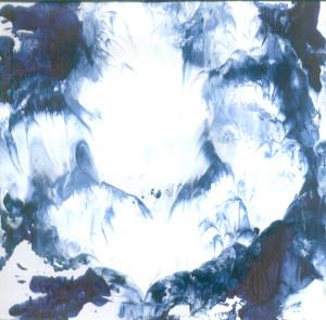Bijeli ljuljan među obkacima