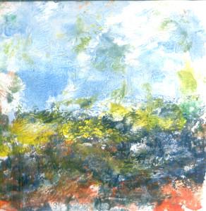 Cvijetna polja