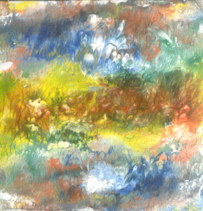 Ljubičice u polju šarenom