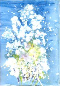 snjezni-bor