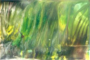 srebrena-mjesecina-nad-modro-zelenom-rijekom